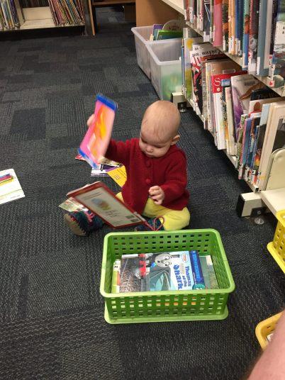 hazel library